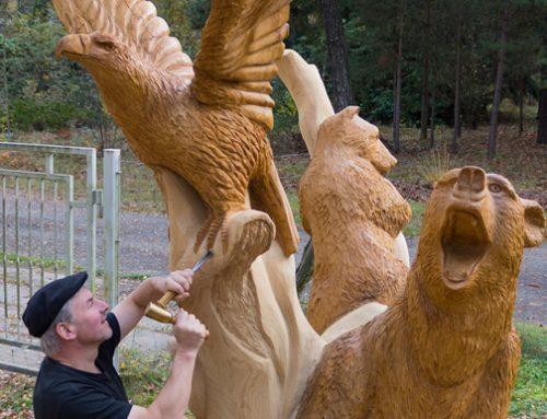 Adler und Bären
